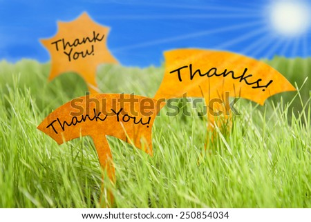 Three Labels With English Text  Thank You And Thanks On Sunny Green Grass For Spring Or Summer Feeling And Blue Sky And Shining Sun - stock photo