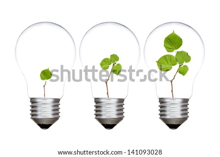 Three light bulbs with green plants inside. Isolated on white background - stock photo