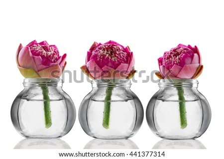 Three lotus flowers on the bottles with reflection on white background, Image creation for religion, tropical country and spa. - stock photo