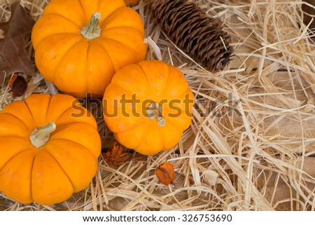 Three mini pumpkins on a straw covered wood floor - stock photo