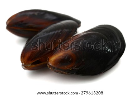 three mussels isolated on white  - stock photo