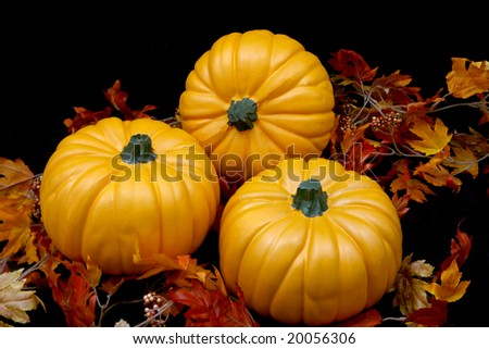 Three orange autumn pumpkins on a black background with some leaves.