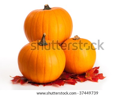 Three orange pumpkins sitting on a layer of autumn leaves