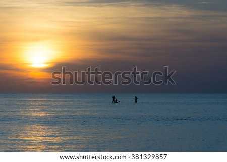 Three paddle boarders watching beautiful sunset