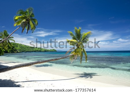 Three palm trees line a white, tropical sand beach highlighted by a beautiful deep blue sky.  - stock photo