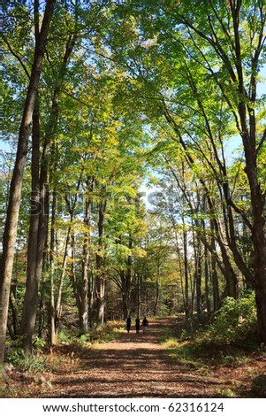 three people walking down a trail in the new england woods