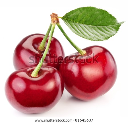 Three perfect sweet cherries with the leaf isolated on a white background. - stock photo