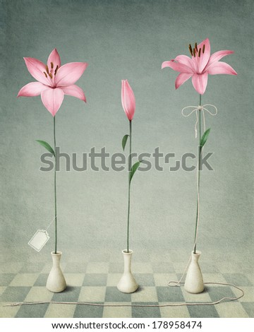 Three pink lilies on a blue background, greeting card or poster - stock photo