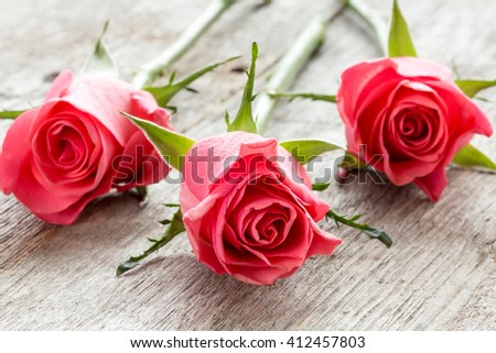 Three pink roses lying on the wooden background