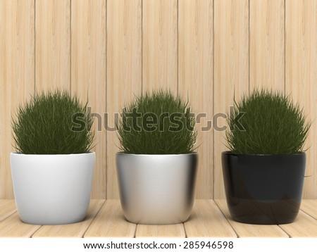 three pot plants on wood background - stock photo