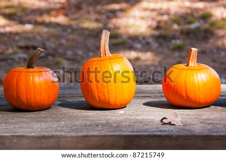 Three pumpkins on wooden table. A colorful trio of pumpkins sits on a table at a country fair in North Carolina.