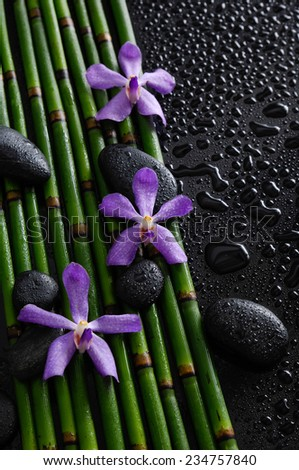 Three purple orchid with stones on bamboo grove on wet background - stock photo