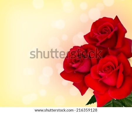 three red roses are on yellow background