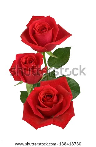Three red roses isolated on white - stock photo