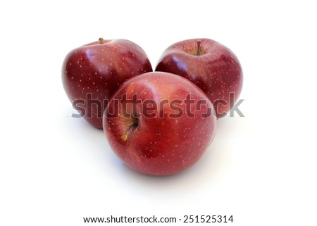 Three red shiny apple varieties Red Chief - stock photo