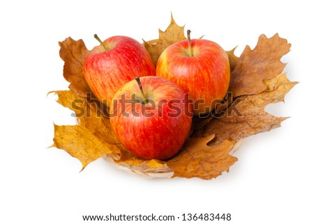 Three ripe fresh red apples on maple and oak leaves isolated on white background - stock photo