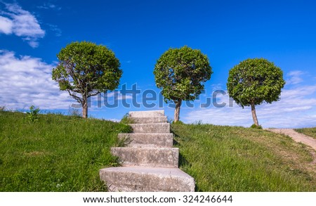 Three rounded trees and old stone stair in green grass to blue cloudy sky  - stock photo