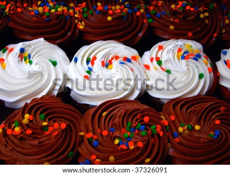 Three rows of chocolate and vanilla cupcakes - stock photo