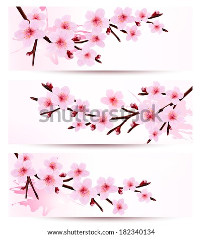 Three spring banners with blossoming sakura branches. Raster version. - stock photo