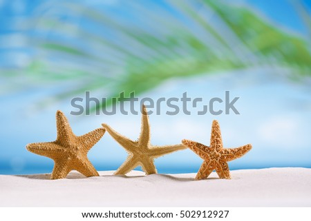 three starfish  on white sand beach with ocean , sky and seascape