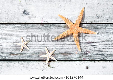 Three starfish or sea stars on a weathered textured wooden background of old timber planks with copyspace