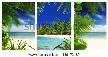 three  tropic  beach and palms theme pictures collage - stock photo