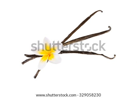 Three vanilla pods with a flower isolated on white background - stock photo