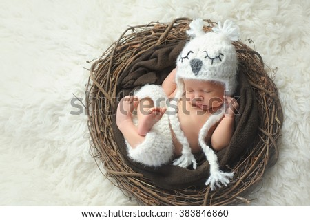 Three week old, newborn baby boy wearing a white, crocheted owl hat and shorts. He is sleeping on his back in a nest. - stock photo