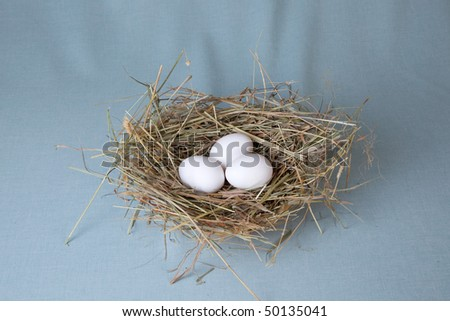 three white eggs lies in nest