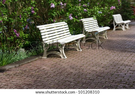 Three white garden benches sitting on a paved pathway - stock photo