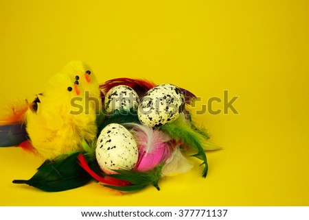 Three white sprinkled eggs,two yellow figure easter chicken in nest in a nest with colorful feathers isolated on a yellow background , easter decoration.. Horizontal view.