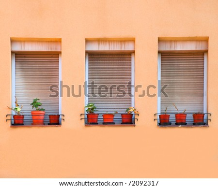 Three windows with flower pots / Barcelona, Spain