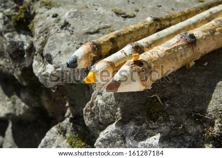 three wooden pencils in nature - stock photo