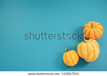 Three yellow and orange Festival squash arranged on blue painted wooden background with copy space