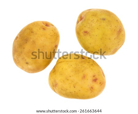 Three yellow gold potatoes isolated on a white background. - stock photo