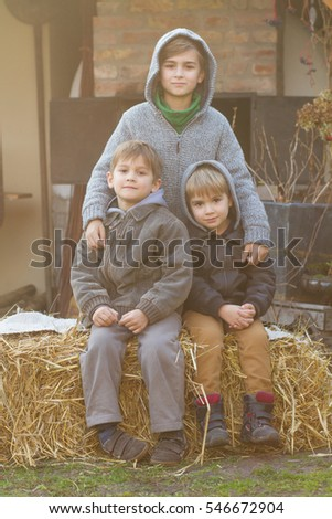 three young brothers - outdoor portrait