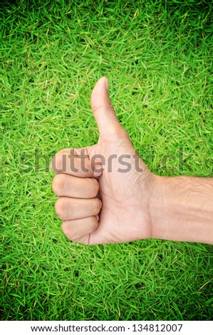 Thumbs up on green grass background