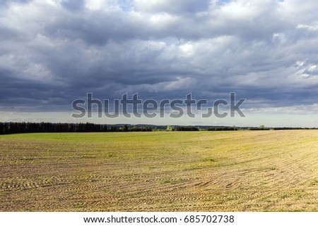 Thunderstorm over the field, spring
