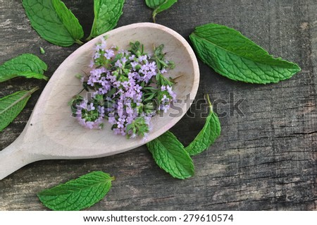 thyme flowers in a wooden spoon surrounded by fresh mint leaves - stock photo