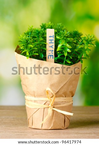 thyme herb plant in pot with beautiful paper decor on wooden table on green background - stock photo