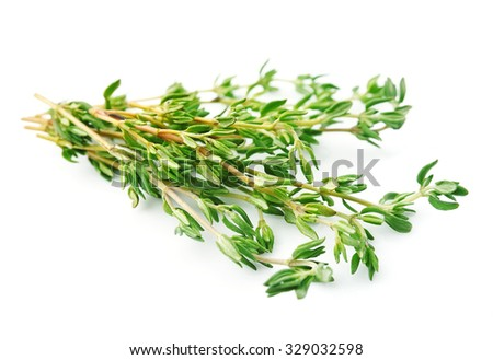 Thyme herbs  close up on white backgrounds. - stock photo