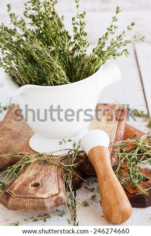 Thyme in a mortar - stock photo