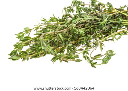 Thyme isolated