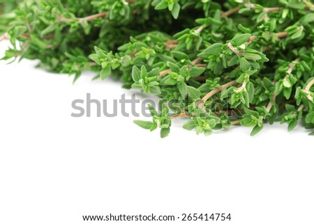 thyme on white isolated background - stock photo