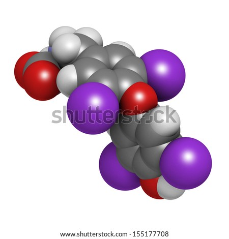 Thyroxine molecule, chemical structure. Thyroid gland hormone that plays a role in energy metabolism regulation. It is a iodine containing derivative of thyrosine. Atoms are represented as spheres. - stock photo