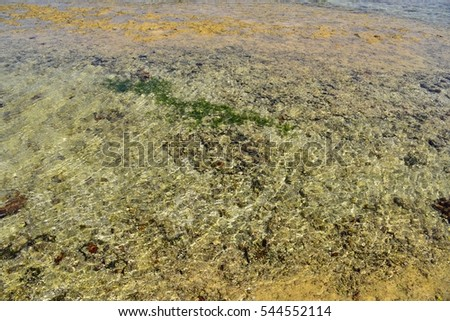 Tide pool at low tide, Okinawa, Japan