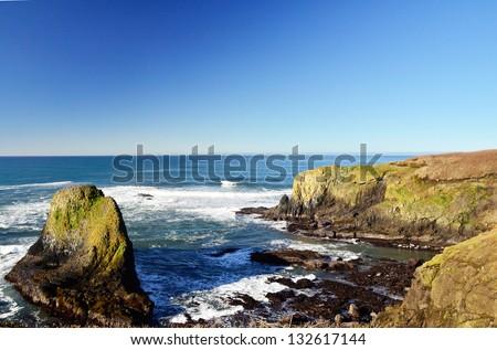 tide pools near Newport Oregon - stock photo