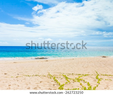 Tide Splashing Waves  - stock photo