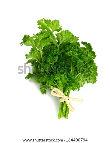 tied fresh parsley isolated on white - stock photo