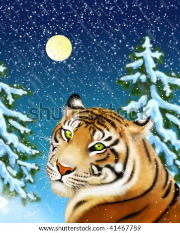 tiger and snowstorm - stock photo